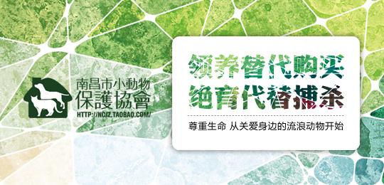 南昌小动物保护协会基地